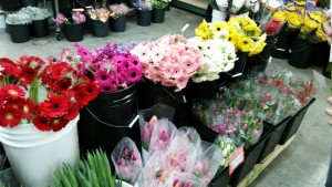 Ahmed Hassan Flower Bouquets