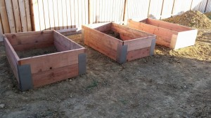 ahmed-hassan-gardening-boxes-ready